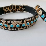 All Turquoise Baby Leopard Leather Dog Collar