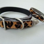 Baby Leopard Dog Collar with Hair On