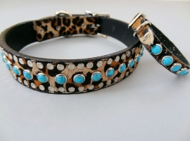 All Turquoise Collars
