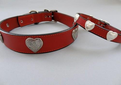 Heart Collars