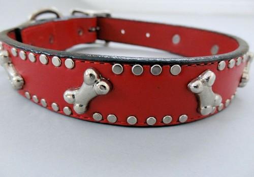 K9 Bone Collars