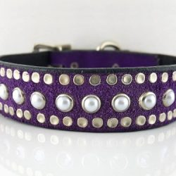 Dog collar All Pearl in Italian leather and purple suede with white pearls