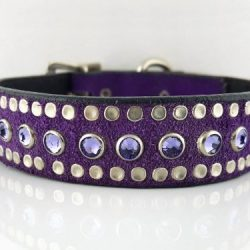 Dog Collar All Swarovski in Italian leather and purple suede with velvet Swarovski crystals