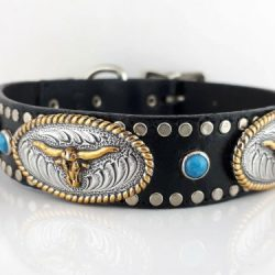 Dog collar No Bull Turquoise in black Italian leather and blue turquoise