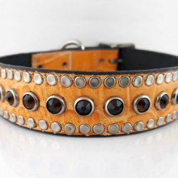 Dog collar All Swarovski in orange Italian leather with moka Swarovski crystals